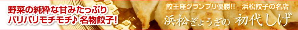 【浜松ぎょうざの初代しげ】【送料無料】初回限定★お試しセット(2種類の味比べ)