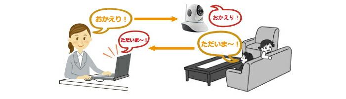 Ri-JAPAN カメラ操作対応 赤外線暗視機能付きネッワークカメラ RCC-9801CSN