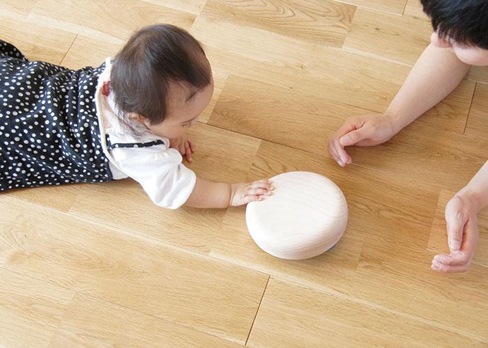 体験童具館 和久洋三 デザイン カラーボール 国産 知育玩具 安心安全