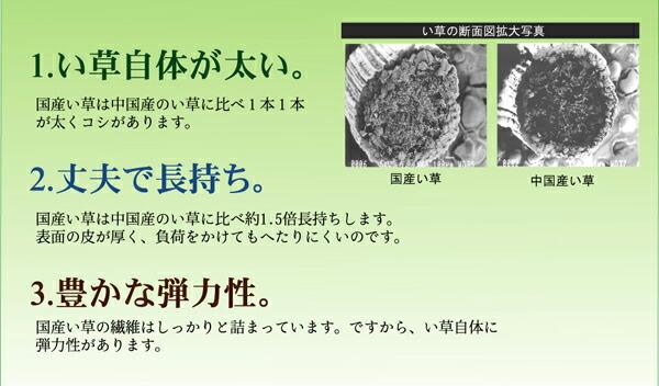 い草ラグ 鍋島(I) 掛川織 花ござ 六畳 6畳 6帖 261×352cm 純国産