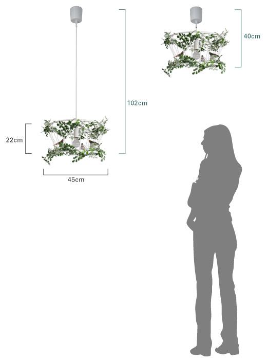フィッロ  商品のサイズ