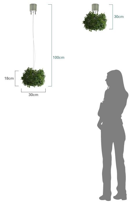 オーランド 商品のサイズ