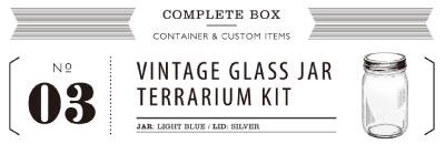 VINTAGE GLASS JAR TERRARIUM KIT 03