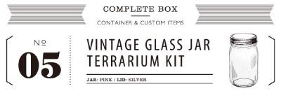 VINTAGE GLASS JAR TERRARIUM KIT 05
