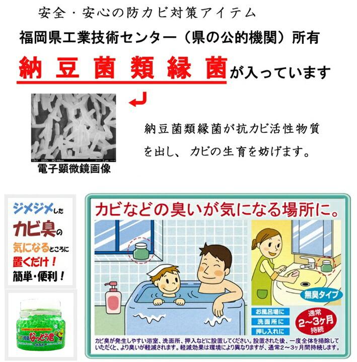 カビ消臭 安全・安心の防カビ対策アイテム