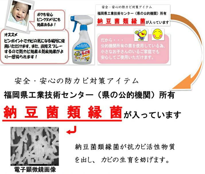 【カビ対策・カビ バイオ】安全・安心の防カビアイテム・納豆菌類縁菌