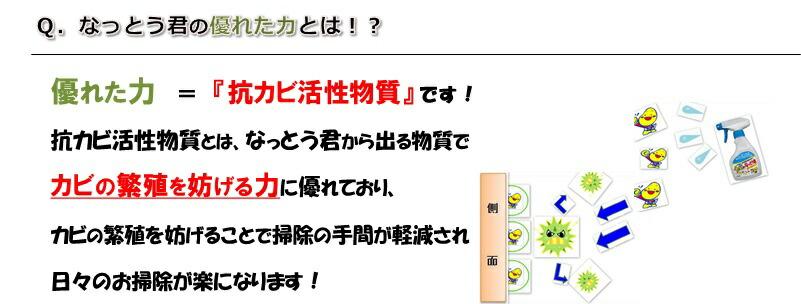 【カビ対策・カビ バイオ】オススメ