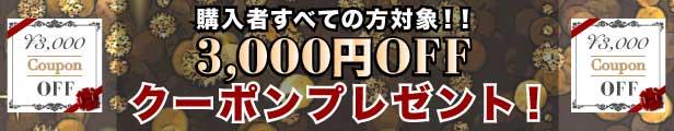 3000円OFF クーポンプレゼント