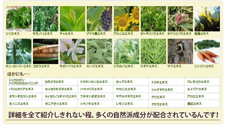2種類の殺菌成分と39種類の自然派成分配合