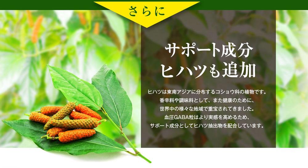さらにサポート成分ヒハツも追加 ヒハツは東南アジアに分泌するコショウ科の植物です。香辛料や調味料として、また健康のために、世界中の様々な地域で重宝されてきました。