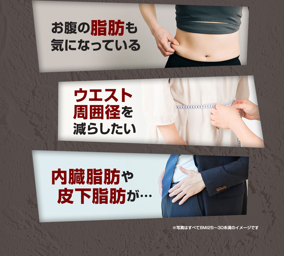 お腹の脂肪も気になっている ウエスト周囲径を減らしたい 内臓脂肪や皮下脂肪が