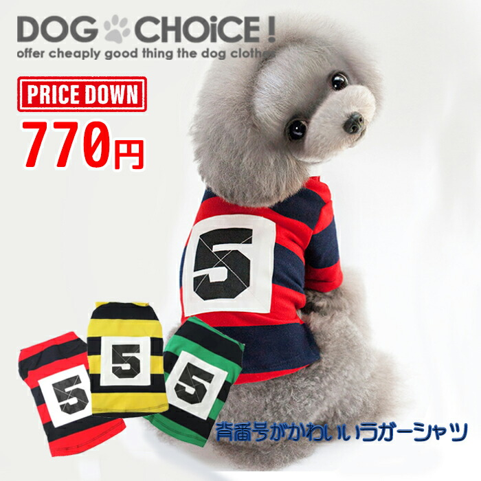 chee-rugbyshirt