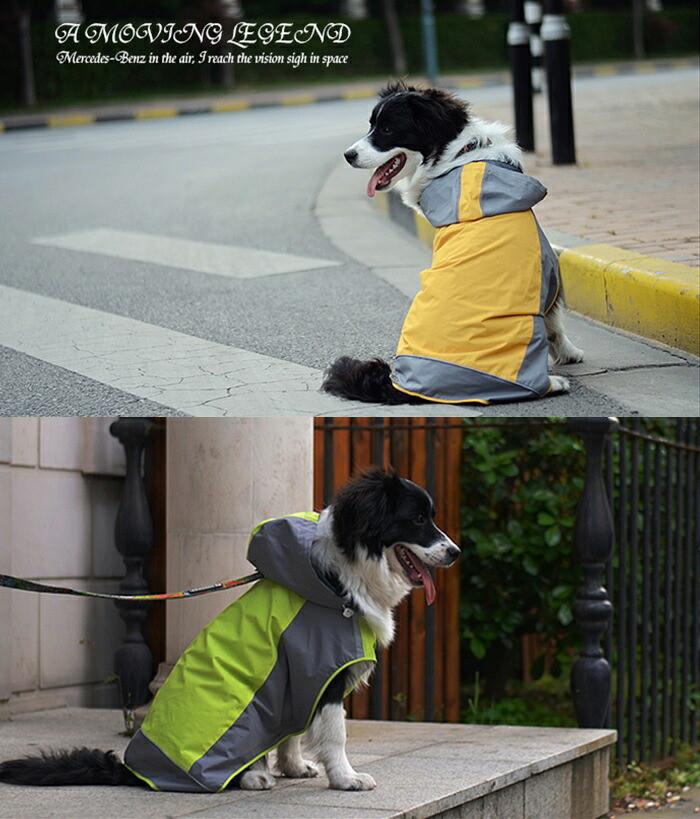 https://image.rakuten.co.jp/dog-choice/cabinet/raincoat/bear-2.jpg