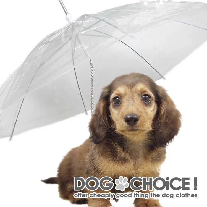 https://image.rakuten.co.jp/dog-choice/cabinet/raincoat/imgrc0068050097.jpg