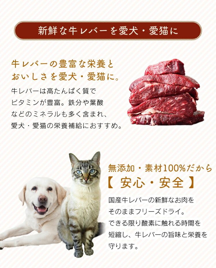 牛 レバー 栄養