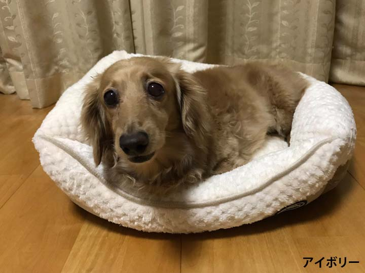 ペットベッド犬用カドラーもこもこモコモコパピードリームスクエアベッドSサイズ(株)サンメイト