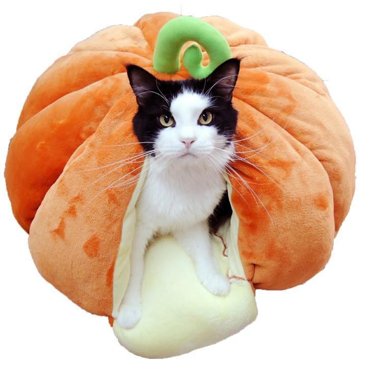 ペットベッド猫用ねこキャットニャンともおおきなもぐる実かぼちゃペッツルート