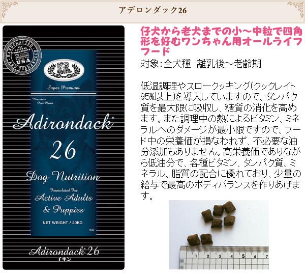 アデロンダック26