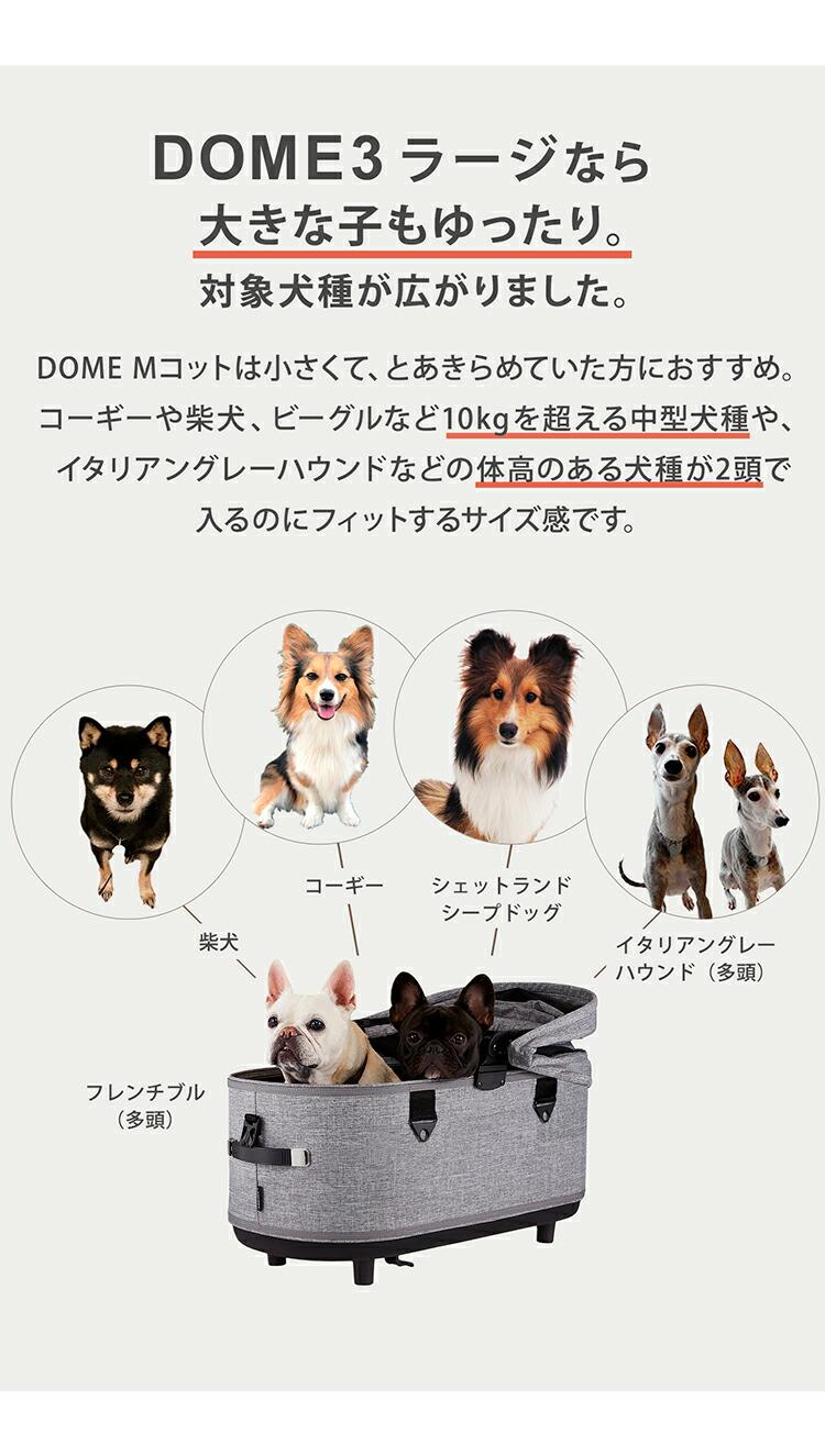 DOME3 ラージサイズ