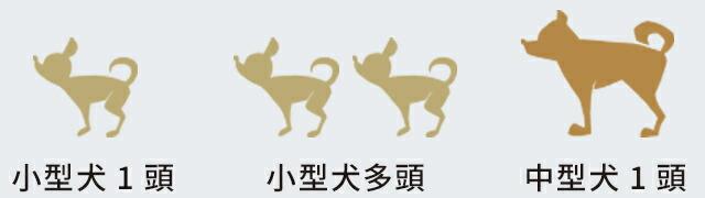 おすすめのわんちゃんサイズ小型・中型犬[~15kg]