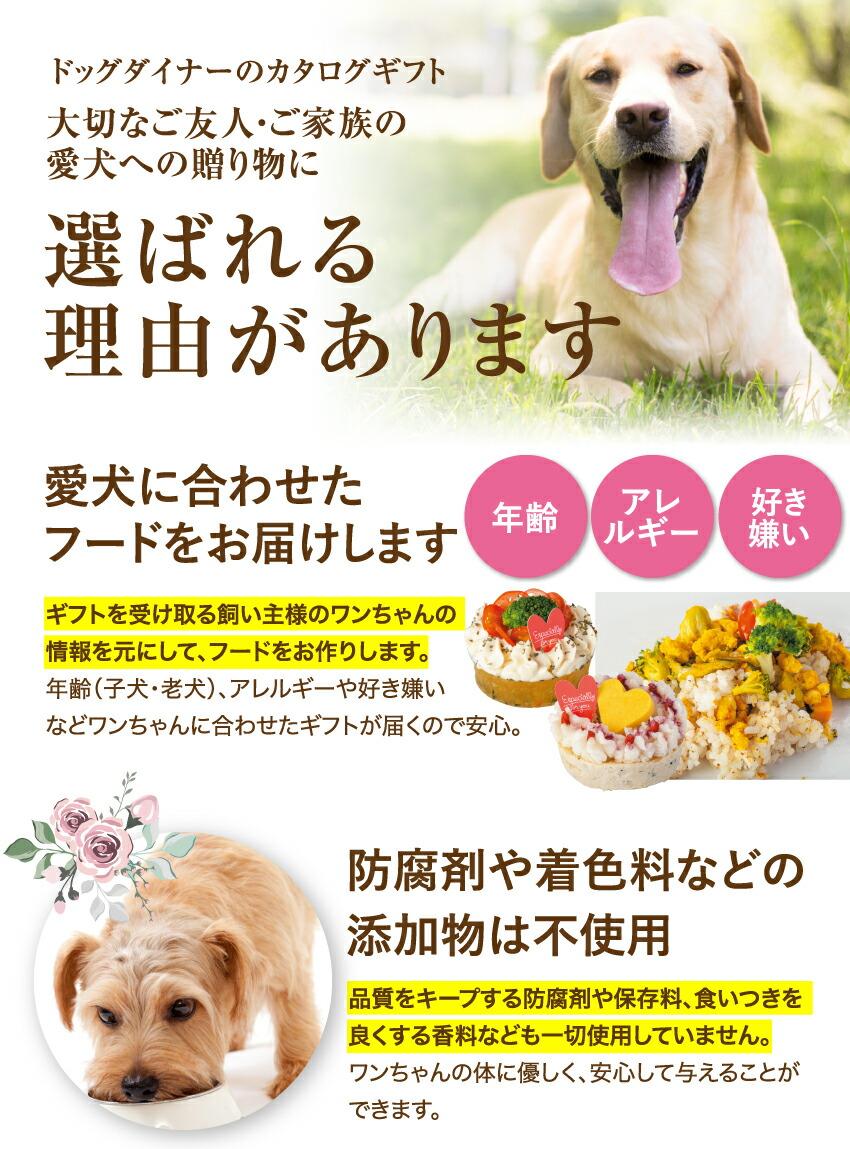犬用 カタログギフト