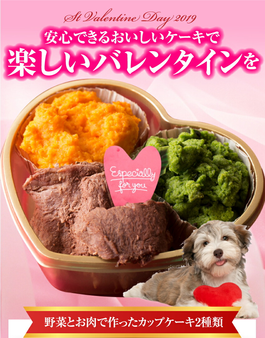 犬用バレンタイン ギフト ケーキ