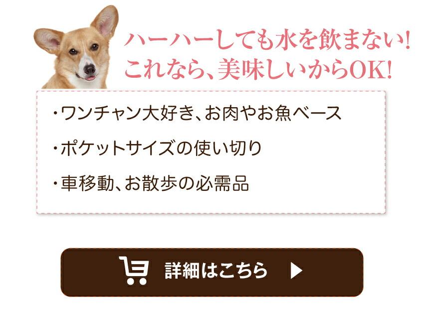 犬・サプリメント・無添加