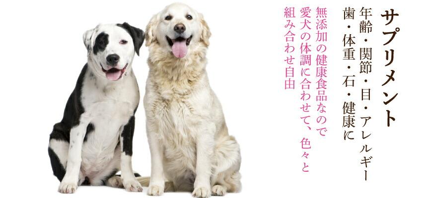 犬の健康食品・サプリメント