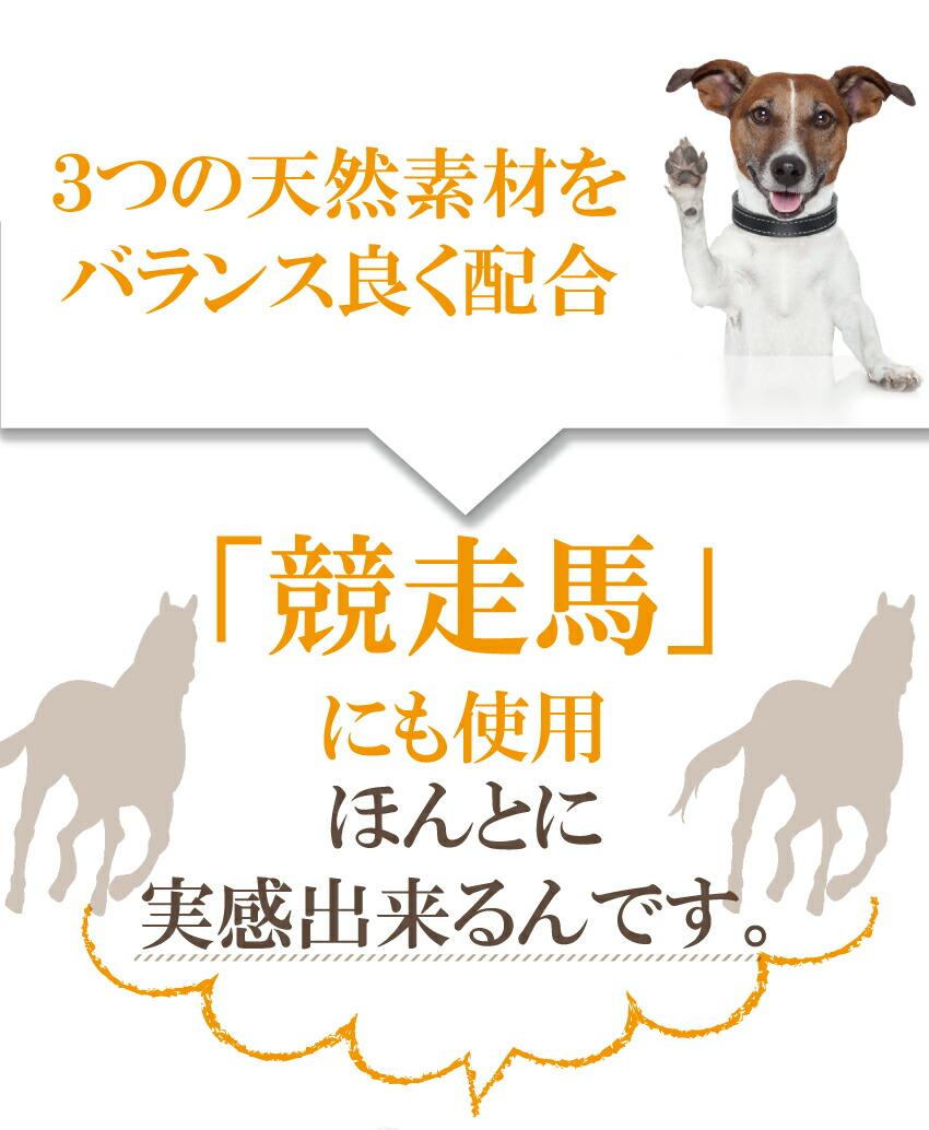 犬や猫の老化、骨、足、腰、関節、肝臓、毛、毛艶の為のアガリクス入り、サプリ・サプリメント