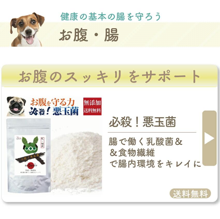 犬のサプリ