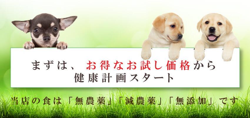 犬の無添加、国産ふりかけ