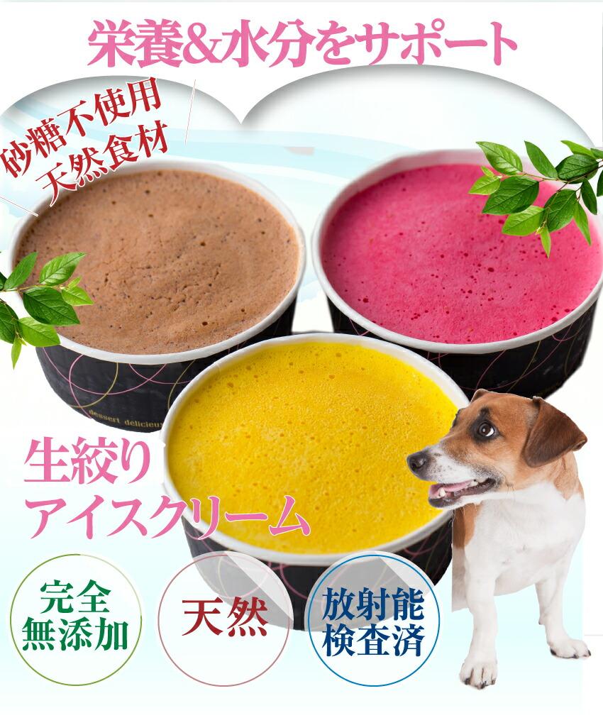無添加の犬用 アイス・アイスクリーム