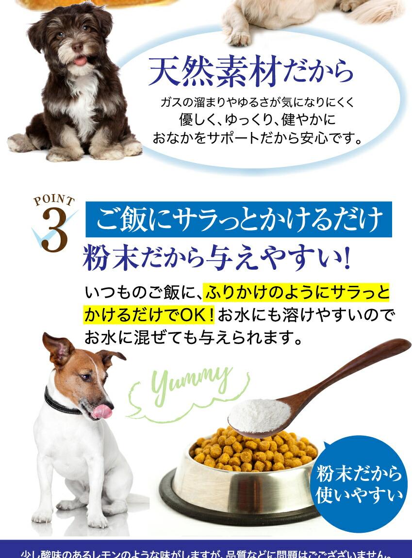 犬・猫・ペット サプリメント(乳酸菌)便秘・腸の健康をサポート