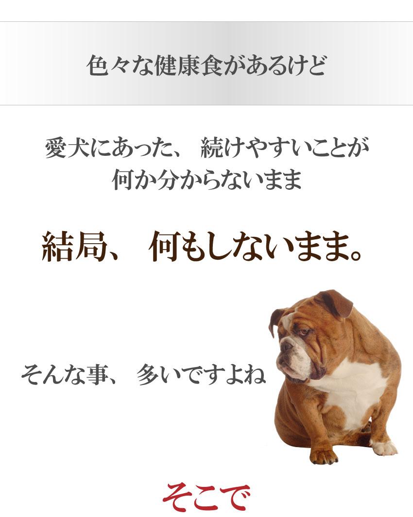 犬・猫・ペットの肝臓・冷えに国産・無添加 ウコン