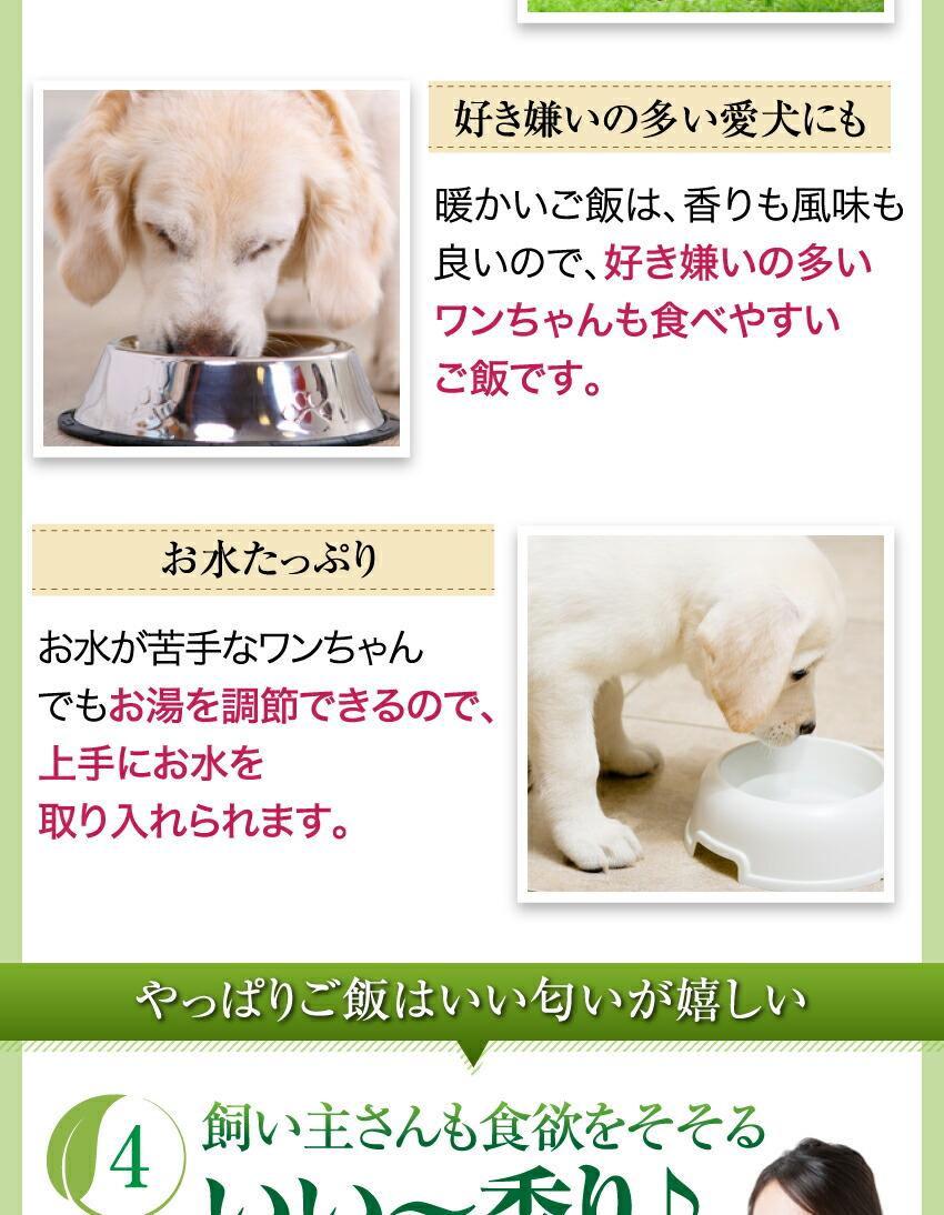 犬の無添加・ドッグフード 手作りご飯