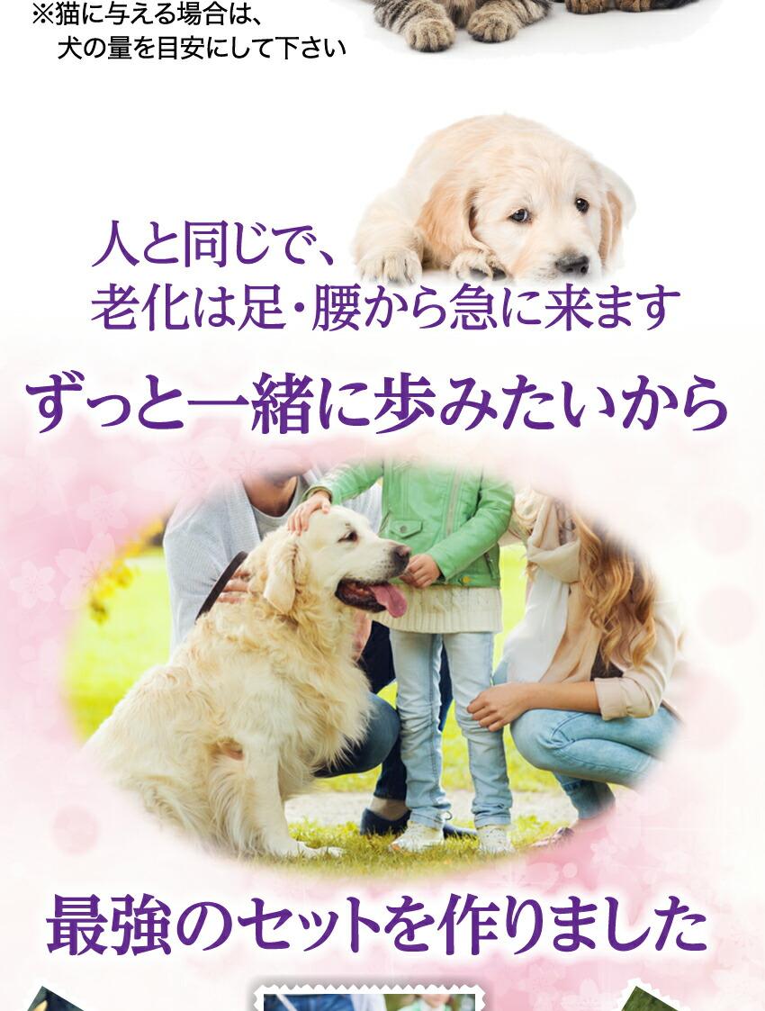 犬の関節・骨・足のケア グルコサミン・コンドロイチン・コラーゲン