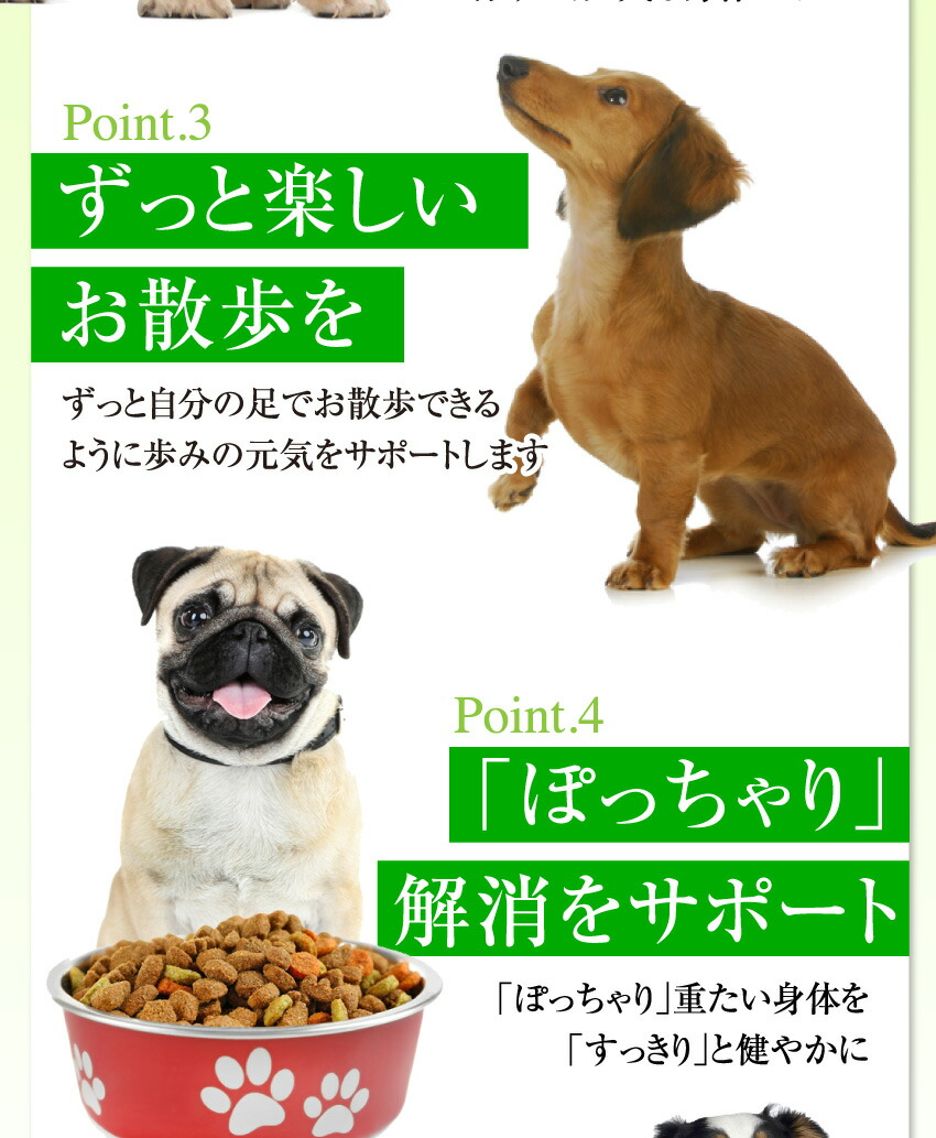 犬・猫・ペット・コエンザイムQ10 サプリ サプリメント