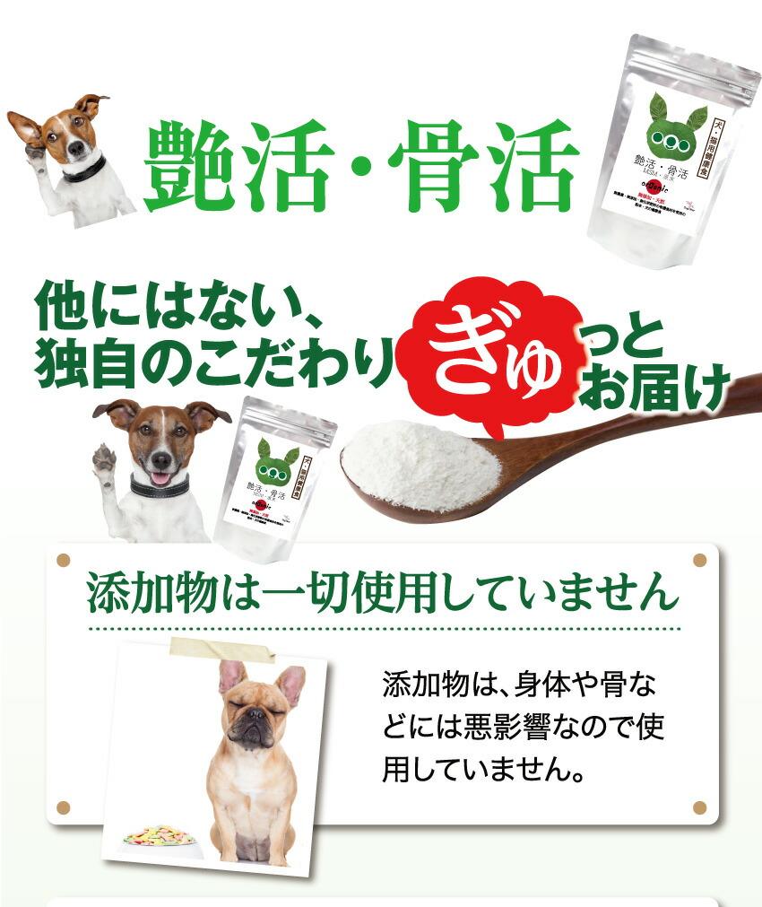 犬の関節・脱臼・足・免疫にMSM・無添加・粉末