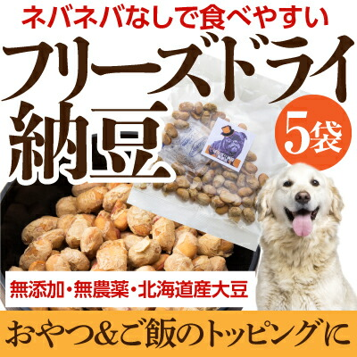 犬用 納豆