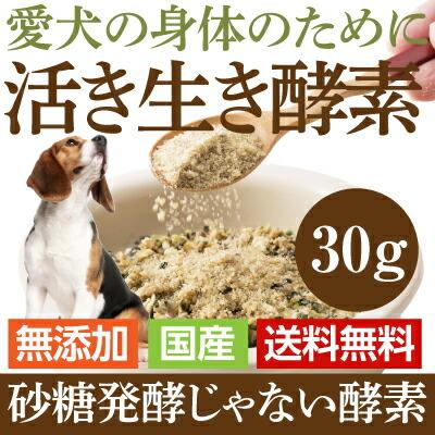 犬用・酵素 サプリメント免疫力に