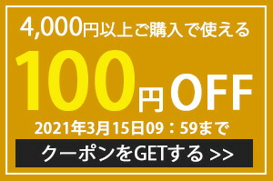 限定クーポン100円引き