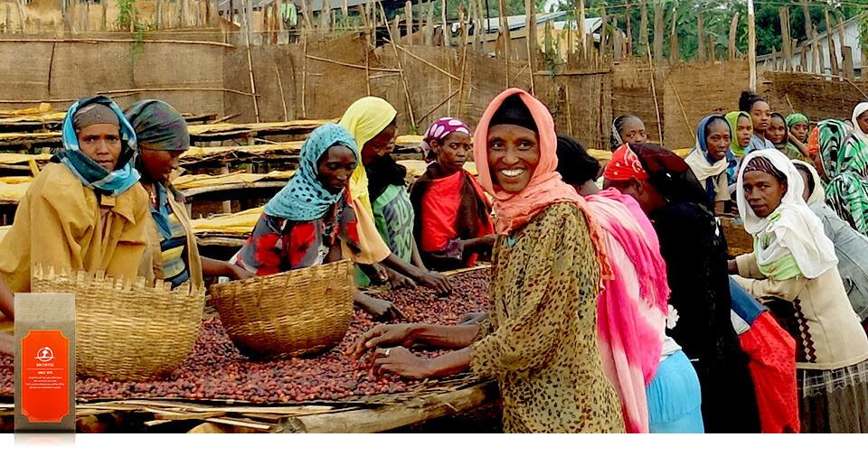 エチオピア イルガチェフェ村から作り出された銘柄。世界に流通する「モカ」系の銘柄のなかでも、コーヒー市場において絶大な評価を得ています。