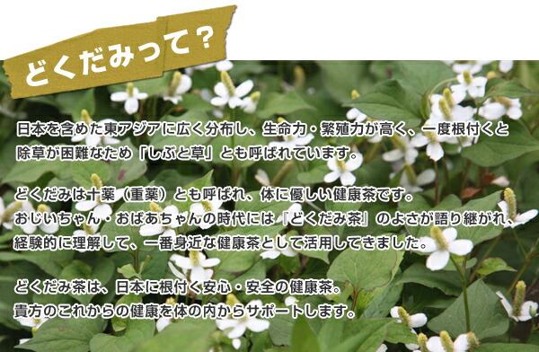 どくだみって? 日本を含めた東アジアに広く分布し、生命力・繁殖力が高く、一度根付くと除草が困難なため「しぶと草」とも呼ばれています。どくだみは十薬(重薬)とも呼ばれ、体に優しい健康茶です。