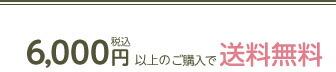 送料6000円以上無料!
