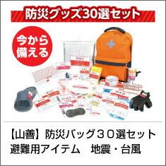 【山善】YAMAZEN 防災バッグ
