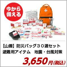 山善 YAMAZEN 防災バッグ30選セット