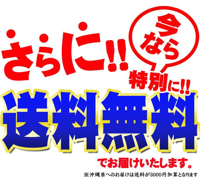 souryu_690.jpg
