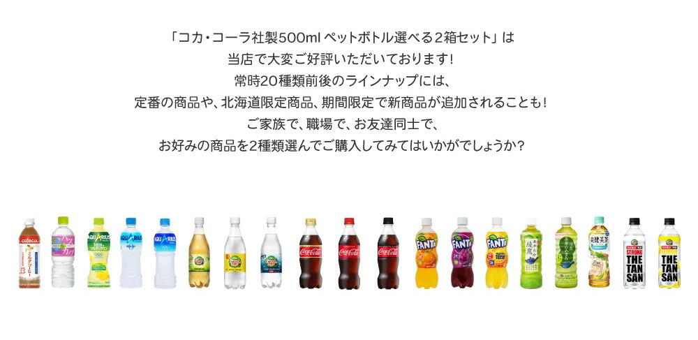 500mlペットボトル選べる2箱セット
