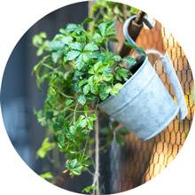 ブリキの植木鉢