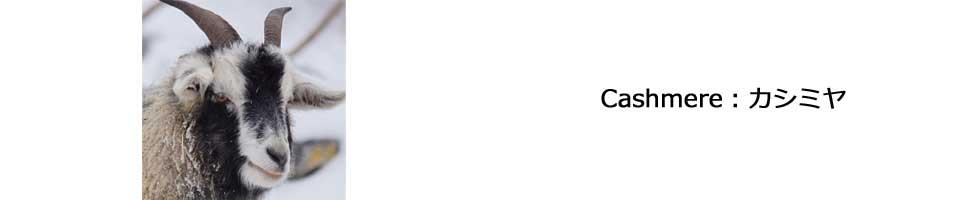 カシミヤカテゴリー イメージ